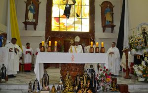 Fiesta de san Martín de Porres Tacna